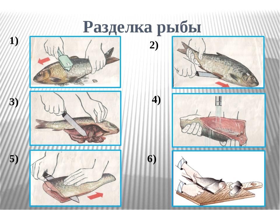 Разделка рыбы 1) 2) 3) 4) 5) 6)
