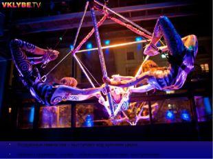 Воздушные гимнастки – выступают под куполом цирка . Гибкая страховка– лонжа –