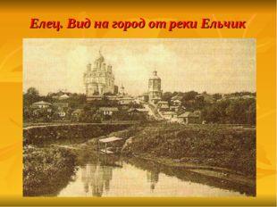 Елец. Вид на город от реки Ельчик