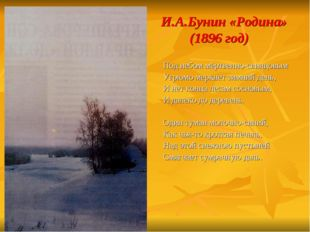 И.А.Бунин «Родина» (1896 год) Под небом мёртвенно-свинцовым Угрюмо меркнет з