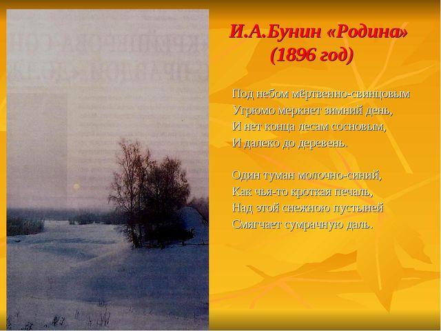 И.А.Бунин «Родина» (1896 год) Под небом мёртвенно-свинцовым Угрюмо меркнет з...