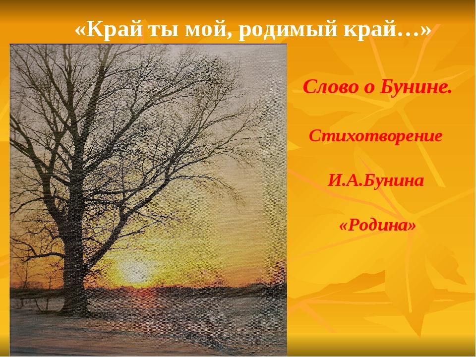 «Край ты мой, родимый край…» Слово о Бунине. Стихотворение И.А.Бунина «Родина»