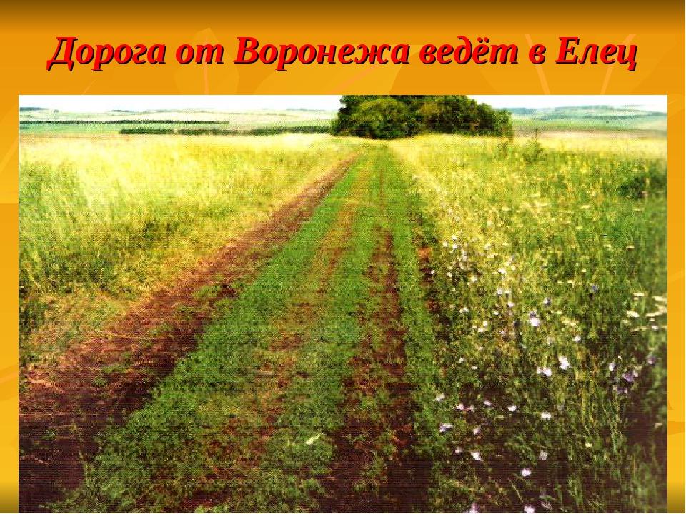 Дорога от Воронежа ведёт в Елец