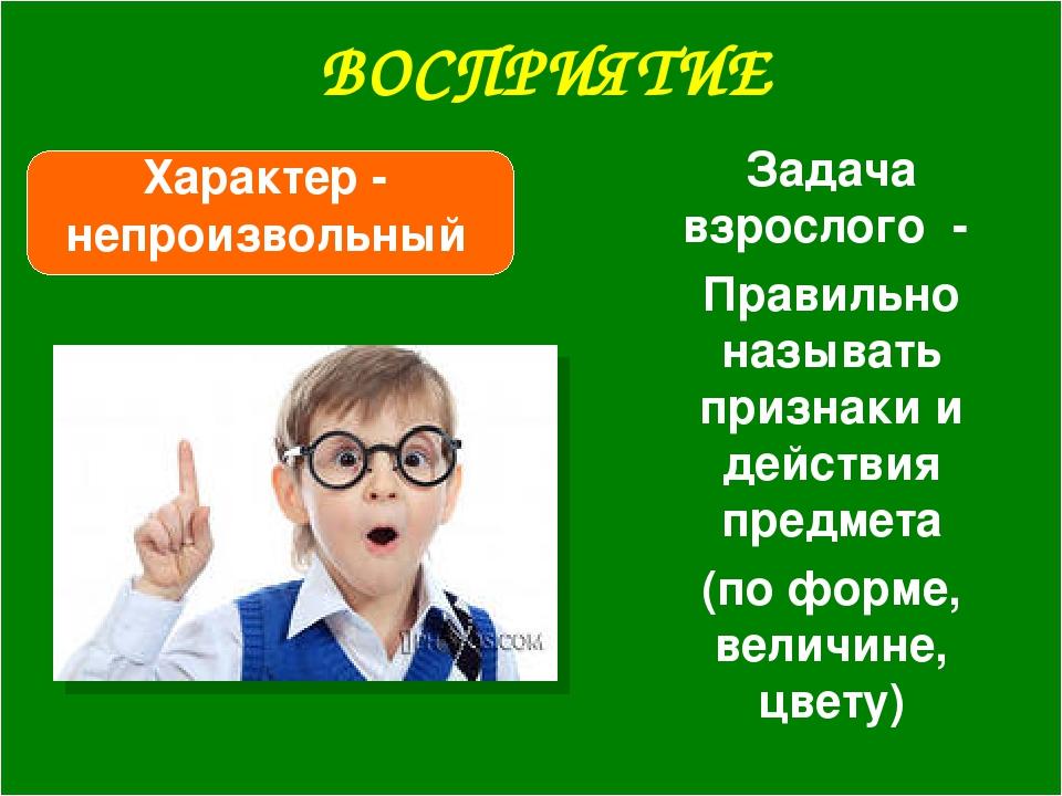 ВОСПРИЯТИЕ Характер - непроизвольный Задача взрослого - Правильно называть пр...
