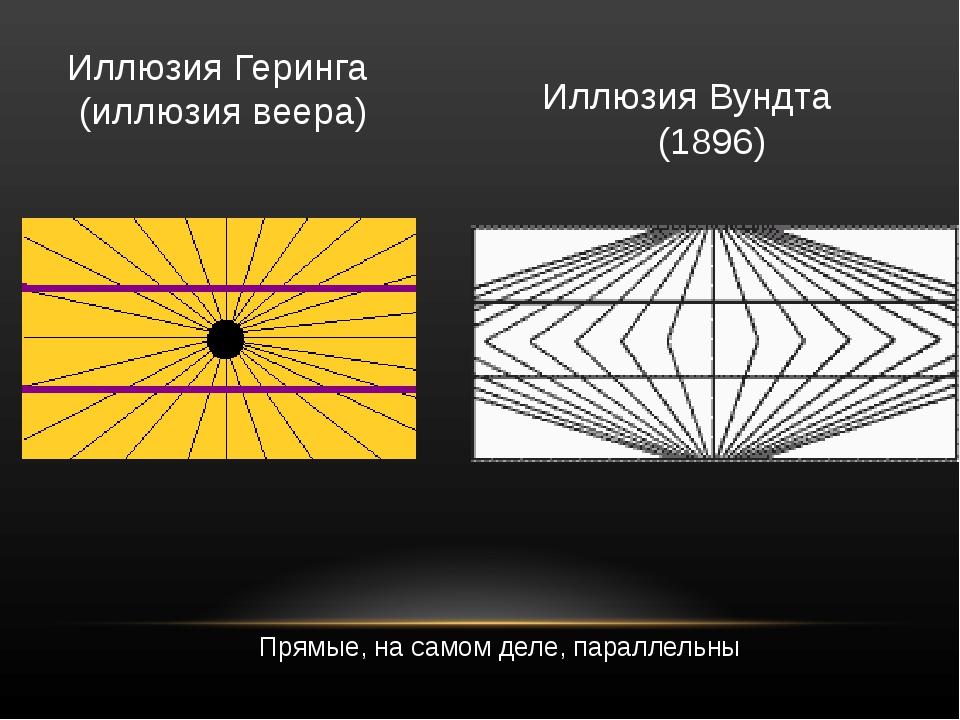 Иллюзия Геринга  (иллюзия веера) Прямые, на самом деле, параллельны