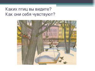 Каких птиц вы видите? Как они себя чувствуют?