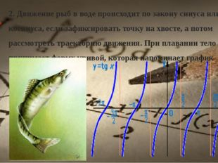 2. Движение рыб в воде происходит по закону синуса или косинуса, если зафикси