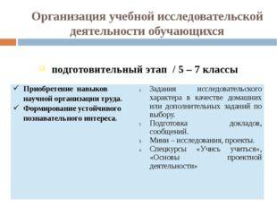 Организация учебной исследовательской деятельности обучающихся подготовительн