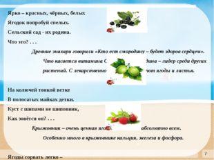 Ярко – красных, чёрных, белых Ягодок попробуй спелых. Сельский сад - их роди