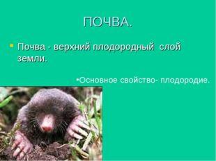 ПОЧВА. Почва - верхний плодородный слой земли. Основное свойство- плодородие.