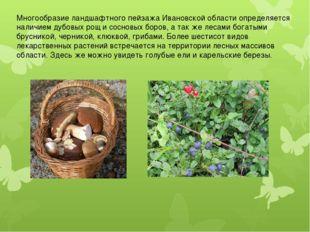 Многообразие ландшафтного пейзажа Ивановской области определяется наличием ду