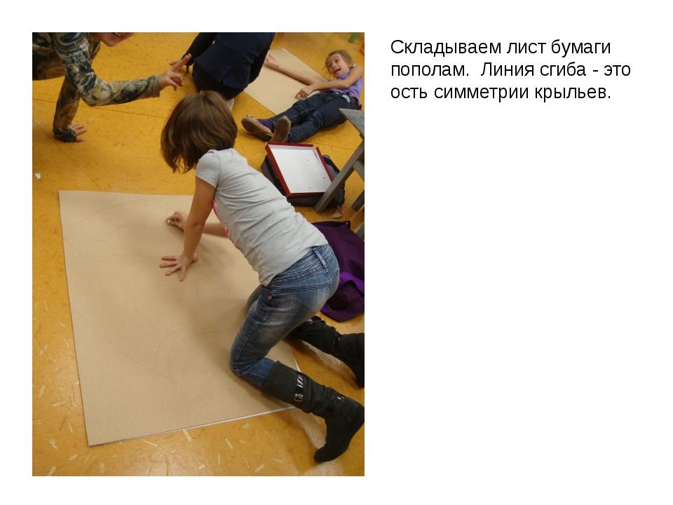 Складываем лист бумаги пополам. Линия сгиба - это ость симметрии крыльев.