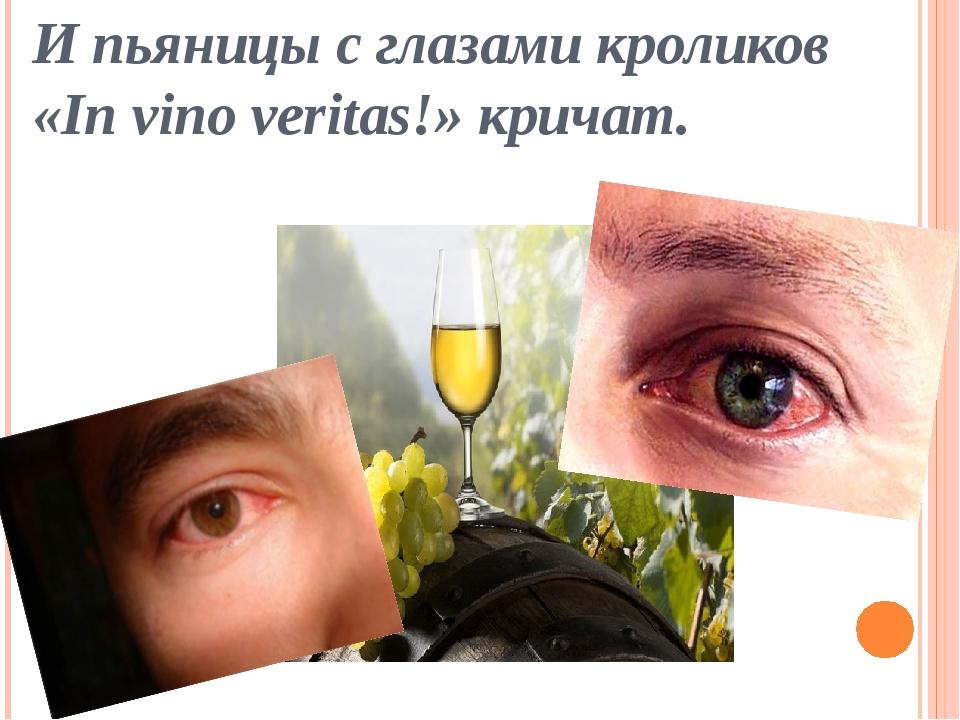 И пьяницы с глазами кроликов «In vino veritas!» кричат.