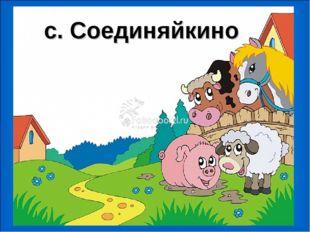 с. Соединяйкино