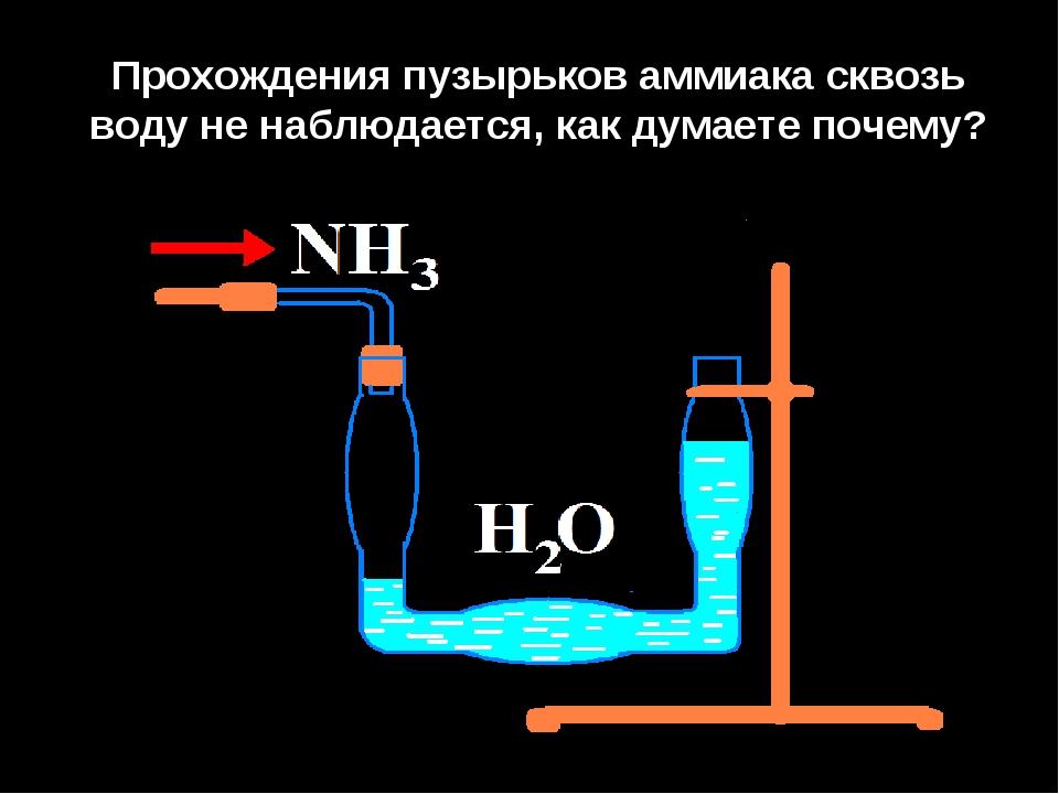 Прохождения пузырьков аммиака сквозь воду не наблюдается, как думаете почему?