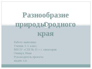 Работу выполнил Ученик 3-А класс МБОУ «СШ № 11 » г. евпатория Онищук Иван Ру