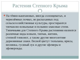 Растения Степного Крыма На тёмно-каштановых, иногдасолонцеватых, ичернозёмн