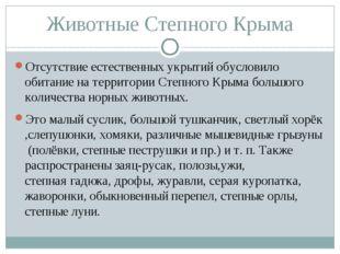 Животные Степного Крыма Отсутствие естественных укрытий обусловило обитание н