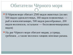 Обитатели Чёрного моря В Чёрном море обитает 2500 видов животных (из них 500