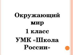 Окружающий мир 1 класс УМК «Школа России»
