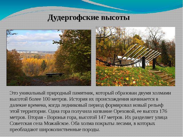 Дудергофские высоты Это уникальный природный памятник, который образован двум...