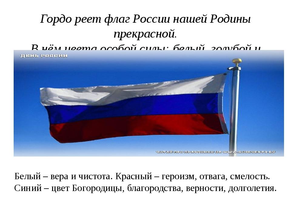Гордо реет над страной наш российский флаг родной