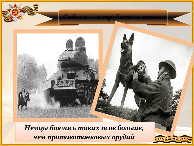 Собаки – истребители танков Немцы боялись таких псов больше, чем противотанко...