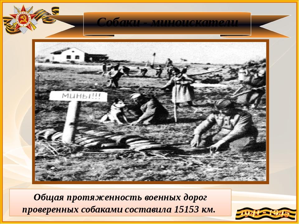 Собаки - миноискатели Общая протяженность военных дорог проверенных собаками...