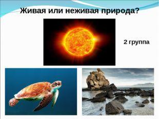2 группа Живая или неживая природа?