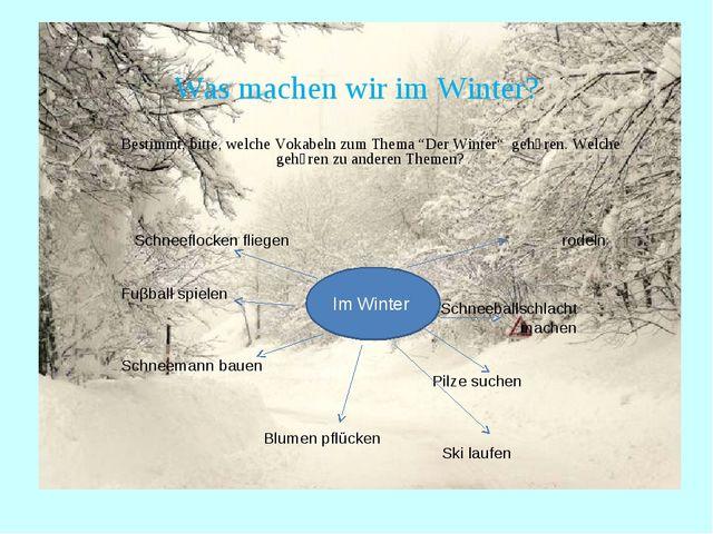 """Was machen wir im Winter? Bestimmt, bitte, welche Vokabeln zum Thema """"Der Win..."""