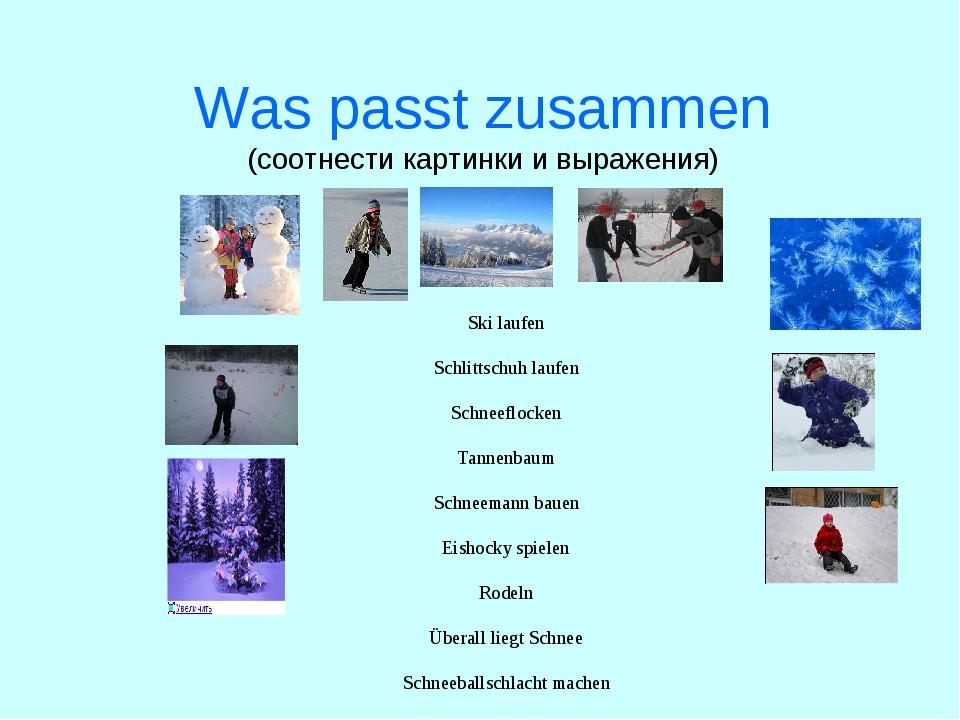 Was passt zusammen (соотнести картинки и выражения)  Ski laufen  Schlittsch...