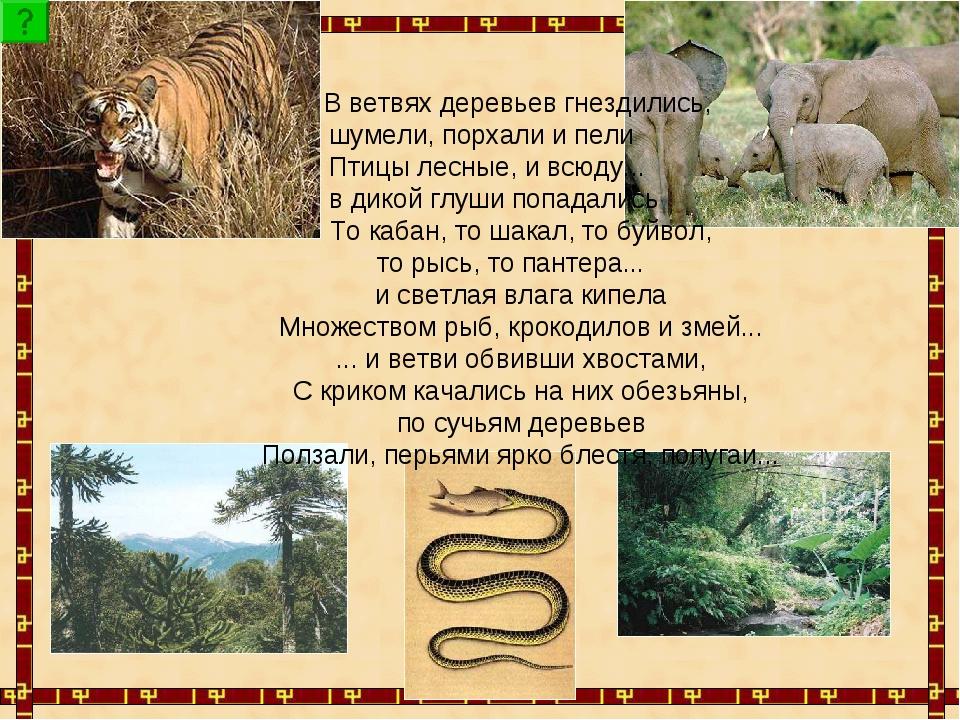 В ветвях деревьев гнездились, шумели, порхали и пели Птицы лесные, и всюду....