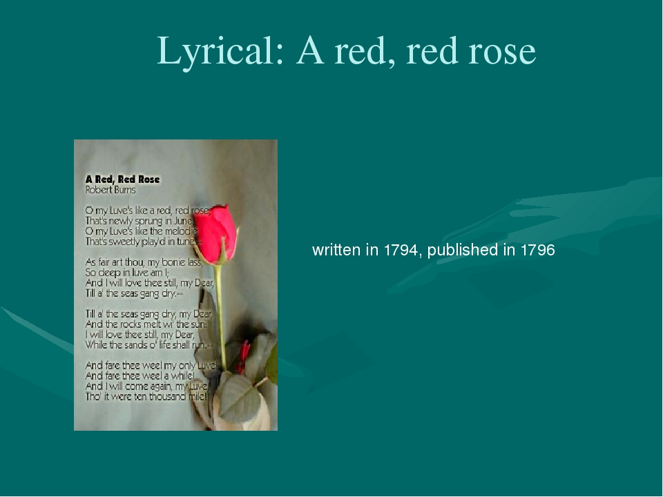 robert burns a red red rose essay Red red rose is a love poem written to be sung robert burns based it on a folk version of a song he heard on his travels burns completed the poem in 1794 in an english dialect called scots for publication in collections of traditional scottish ballads.