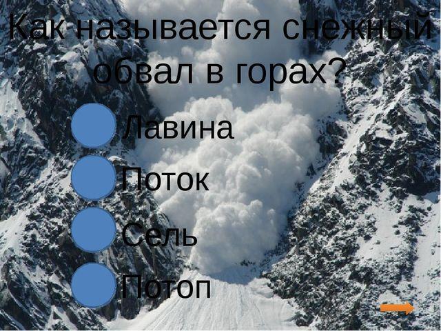Как называется снежный обвал в горах? Лавина Поток Сель Потоп