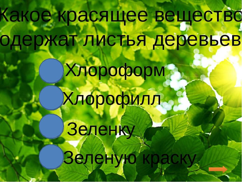 Какое красящее вещество содержат листья деревьев? Хлороформ Хлорофилл Зеленк...