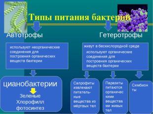 Типы питания бактерий Автотрофы Гетеротрофы живут в бескислородной среде испо