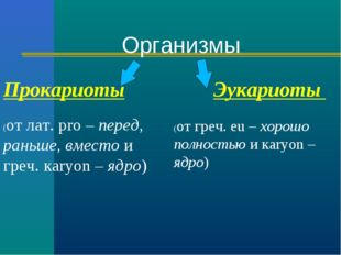 Прокариоты Эукариоты (от лат. рro – перед, раньше, вместо и греч. кaryon – яд