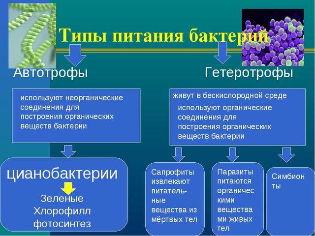 Типы питания бактерий Автотрофы Гетеротрофы живут в бескислородной среде испо...