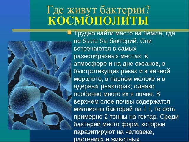 Где живут бактерии? КОСМОПОЛИТЫ Трудно найти место на Земле, где не было бы б...