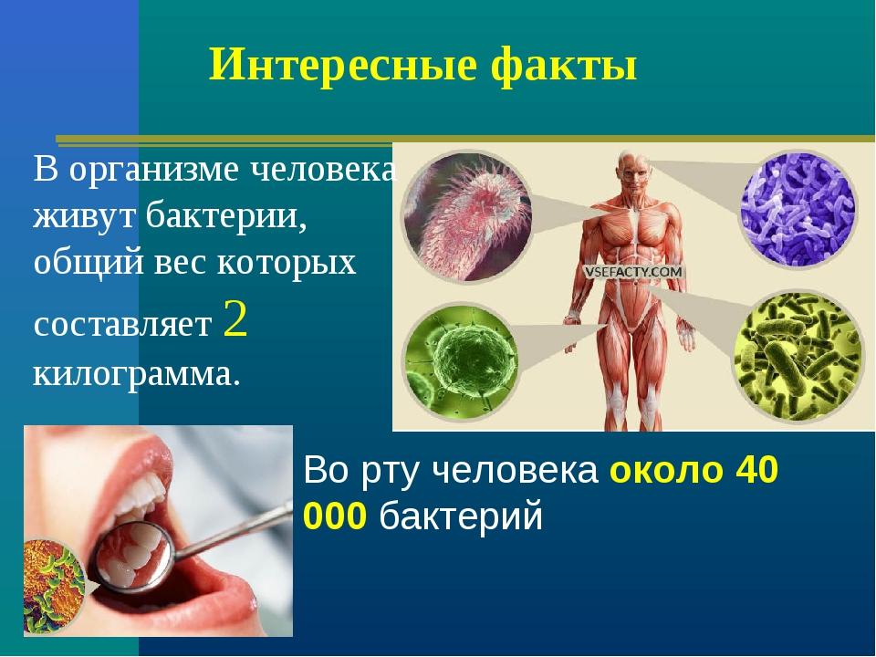 Интересные факты В организме человека живут бактерии, общий вес которых соста...