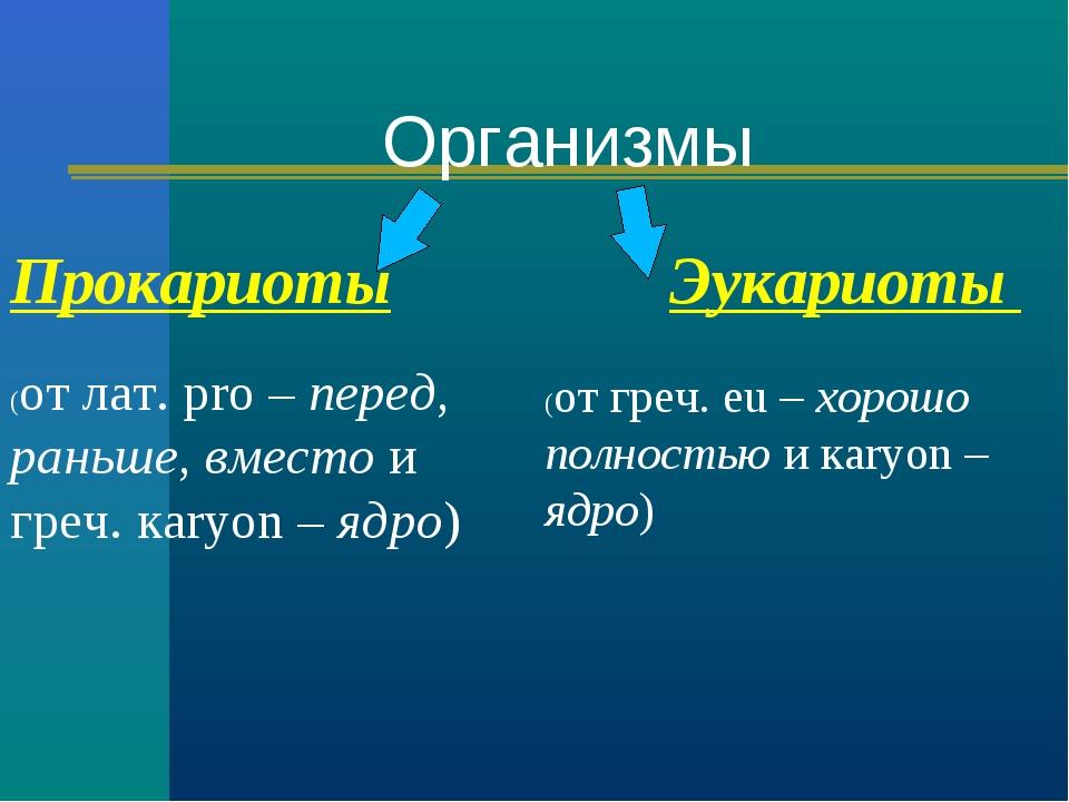 Прокариоты Эукариоты (от лат. рro – перед, раньше, вместо и греч. кaryon – яд...
