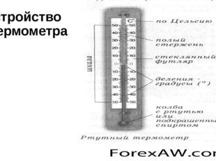 Устройство термометра.