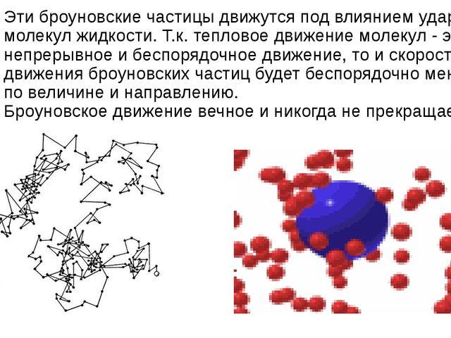 Эти броуновские частицы движутся под влияниемударов молекул жидкости.Т.к. т...