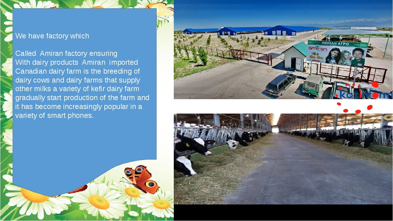 We have factory which Called Amiran factory ensuring With dairy products Ami...