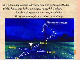 А Каллимаху он был известен как открыватель Малой Медведицы, что видно из так