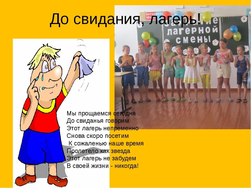 цыпленком стихи директору лагеря как для фото