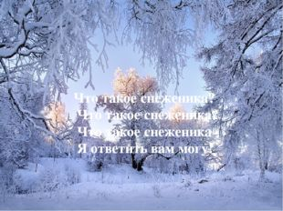 Что такое снеженика? Что такое снеженика? Что такое снеженика - Я ответить в