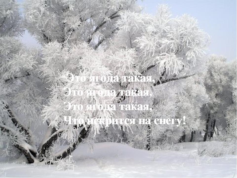 Это ягода такая, Это ягода такая, Это ягода такая, Что искрится на снегу! Эт...