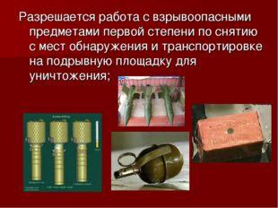 Разрешается работа с взрывоопасными предметами первой степени по снятию с мес