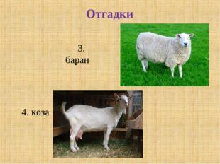 Отгадки 3. баран 4. коза